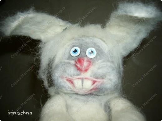 кролики:) фото 1