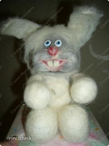 кролики:) фото 2