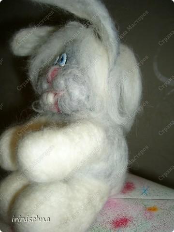 кролики:) фото 3