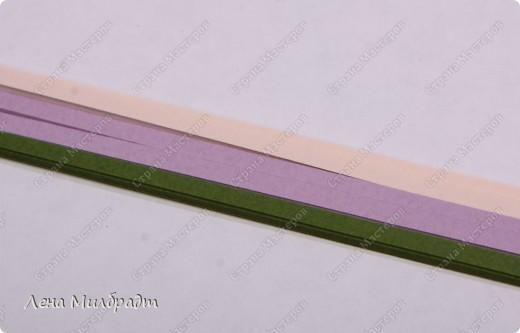 Набор инструментов и материалов для квиллинга:  Тонкое Шило для скручивания бумажных полосок, игла которого не превышает 1мм в диаметре, что позволяет сформировать середину рола как можно тоньше. Также подойдут гобеленовые иглы или булавки. Пинцет для составления композиций. Хорошо подходят прямые гладкие пинцеты для ювелирных работ. Ножницы следует выбирать небольшие с острыми прямыми кончиками, например, ножницы для вырезания силуэтов. Клей ПВА, должен быстро высыхать и не оставлять следов.   фото 2