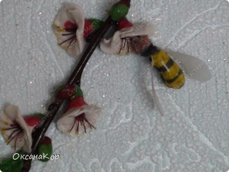 Цветущая вишня. фото 2
