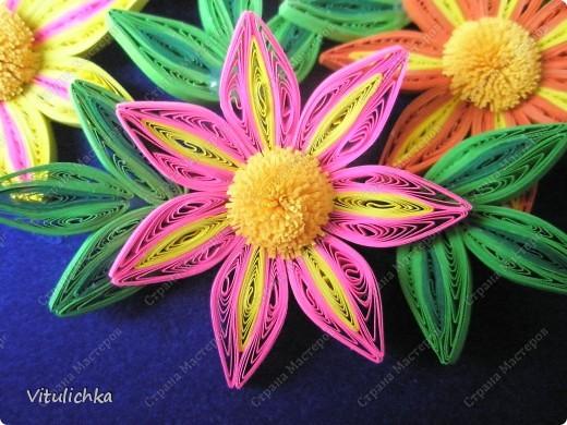 Цветочки-огонечки фото 1