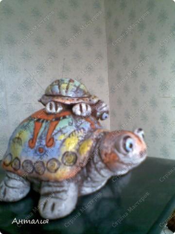 черепашка и рыбка Дианы фото 1