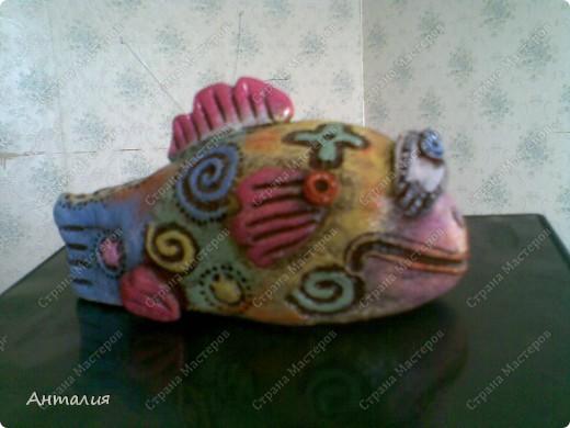черепашка и рыбка Дианы фото 3