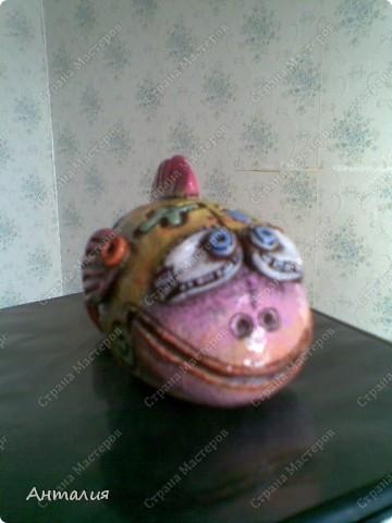 черепашка и рыбка Дианы фото 4