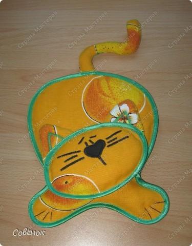 Котик-пакетница фото 1