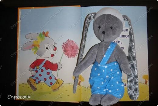 Зайка и книжка про него