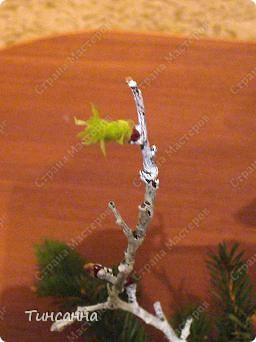 Такие, уже  лопнувшие почки, появились на ветках, использованных в новогодней композиции. фото 7