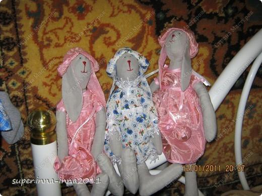 мои зайчихи фото 2