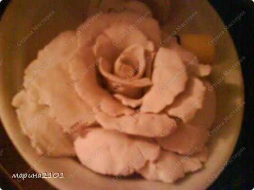 Роза с феропласта фото 3