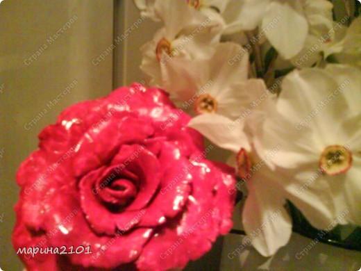 Роза с феропласта фото 1