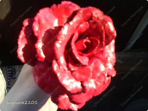Роза с феропласта фото 5