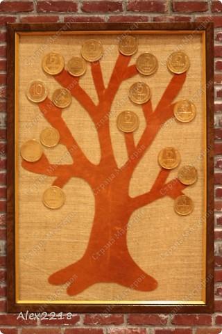 Денежное дерево  фото 3