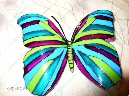 Зима еще не закончилась, а ко мне уже прилетели бабочки)))) фото 5