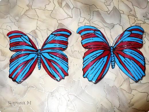 Зима еще не закончилась, а ко мне уже прилетели бабочки)))) фото 3