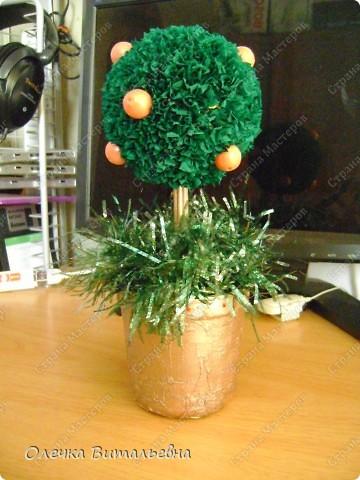 Что-то так захотелось, чтобы под Новый год у меня появилось своё мандариновое дерево... Колдовала, колдовала... Но чего-то не хватает!!!   фото 2