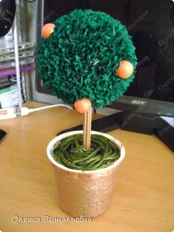 Что-то так захотелось, чтобы под Новый год у меня появилось своё мандариновое дерево... Колдовала, колдовала... Но чего-то не хватает!!!   фото 1
