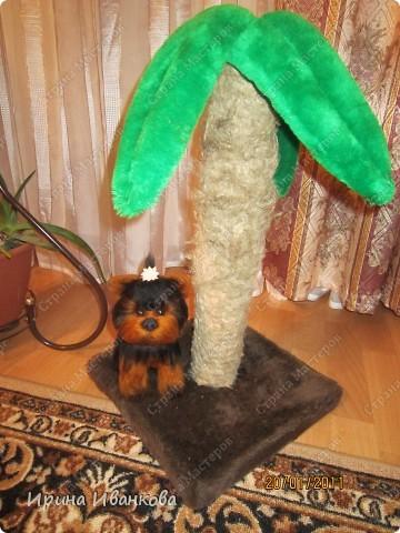 Вот такая игрушка у меня получилась из шерсти))Признаться, делала я ее долго, но результатом довольна)) фото 4