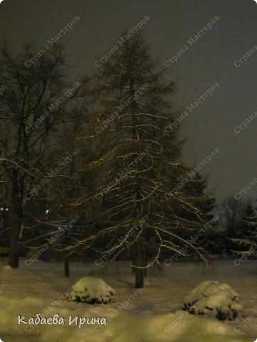 Вечер 21 января 2011 года фото 7