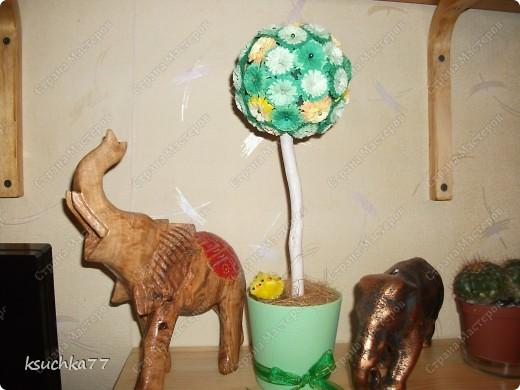 Мое любимое деревце ))) Цветы выполнены в технике квиллинг. фото 1