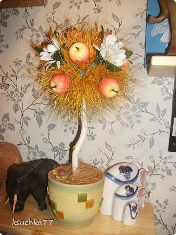 Декоративное дерево фото 1
