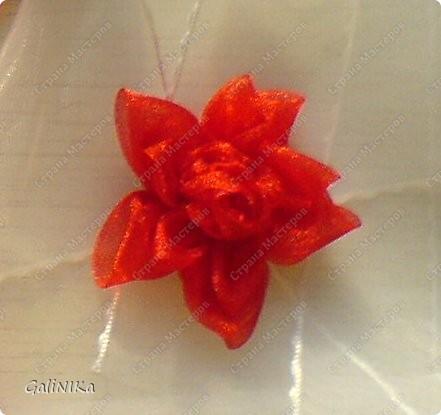 Это моя первая бабочка, сделанная в технике Канзаши фото 4