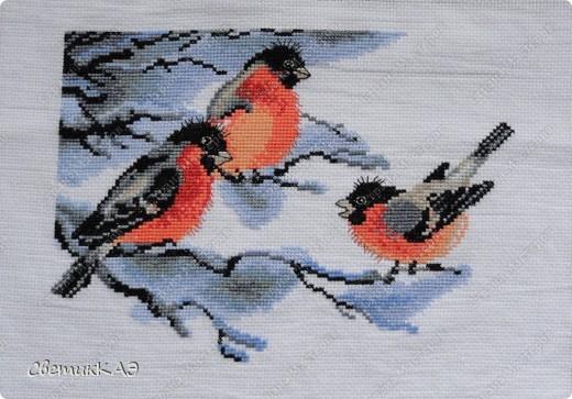 Долго ждали птички своей очереди, а вышивались легко и быстро - в Новогодние каникулы. фото 1