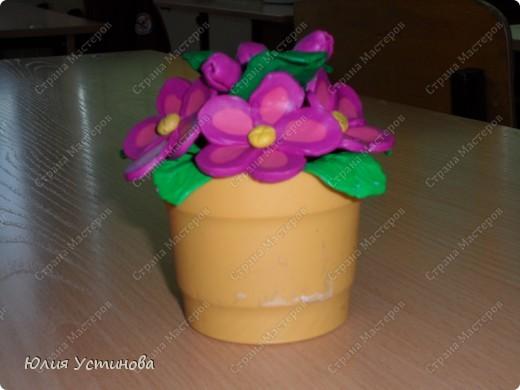 Комнатные цветы из пластилина.  фото 3