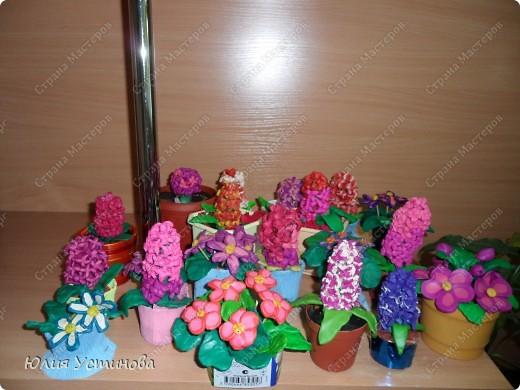 Комнатные цветы из пластилина.  фото 2
