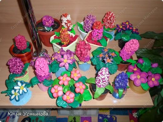 Комнатные цветы из пластилина.  фото 4