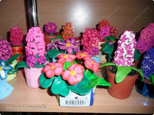 Комнатные цветы из пластилина.  фото 1