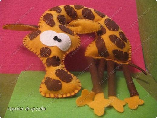 Три жирафа фото 1