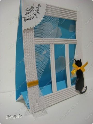 Почему кошки так любят сидеть на окне? Почему так пристально вглядываются в даль? Что видят там они? Может быть, то, что не дано видеть нам, людям?  фото 15