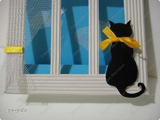 Почему кошки так любят сидеть на окне? Почему так пристально вглядываются в даль? Что видят там они? Может быть, то, что не дано видеть нам, людям?  фото 16