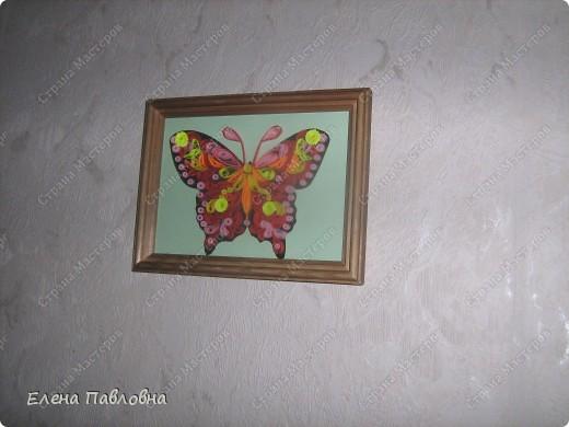 А мы бабочек не сушим-из бумаги их творим... фото 5