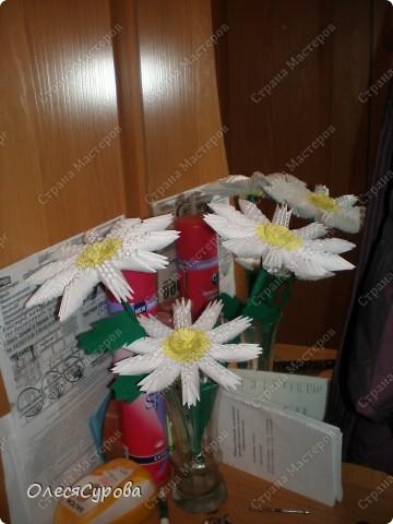Вот такие у нас ромашки с сыном получились!!! Так сказать, проба пера в технике модульного оригами! фото 2