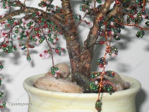 """Дебют бисерного дерева. Знаю, что много шибок, но обязально буду совершенствоваться. Названия дерева нет, т.к. бисер был из """"загашников"""", слепила из того, что было. Однако деревце нашло своего хозяина (успешно подарено). ;) фото 2"""