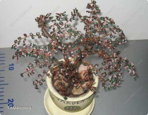 """Дебют бисерного дерева. Знаю, что много шибок, но обязально буду совершенствоваться. Названия дерева нет, т.к. бисер был из """"загашников"""", слепила из того, что было. Однако деревце нашло своего хозяина (успешно подарено). ;) фото 3"""