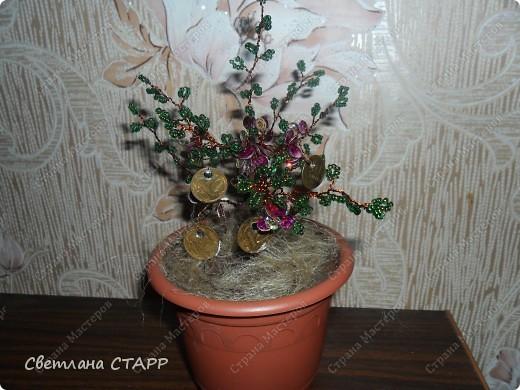 ещё одно деревце фото 1