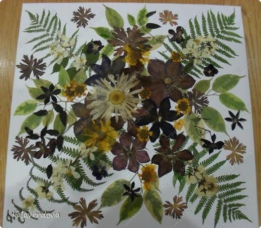 Это сделала из собранных мною и засушенных растений. Подарила подругам. фото 3
