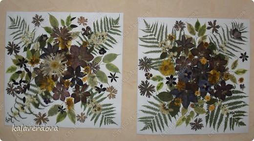 Это сделала из собранных мною и засушенных растений. Подарила подругам. фото 1