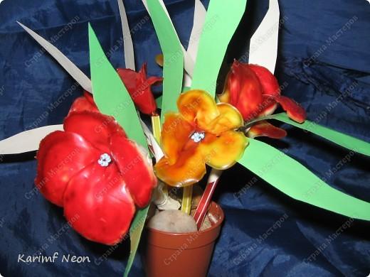 МОЁ ИЗОБРЕТЕНИЕ. Цветы из клея ПВА. 16 февраля 2011 года.  фото 11