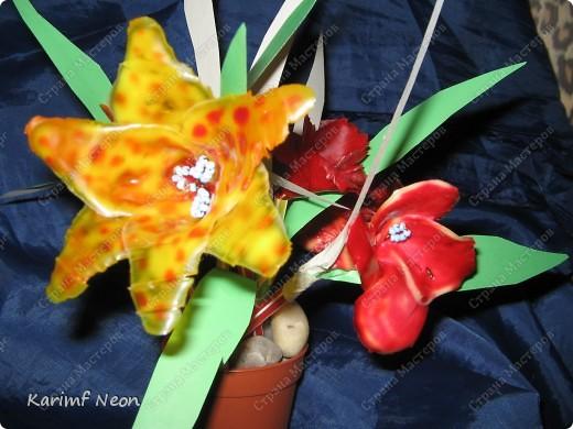 МОЁ ИЗОБРЕТЕНИЕ. Цветы из клея ПВА. 16 февраля 2011 года.  фото 13