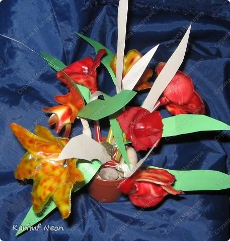 МОЁ ИЗОБРЕТЕНИЕ. Цветы из клея ПВА. 16 февраля 2011 года.  фото 1