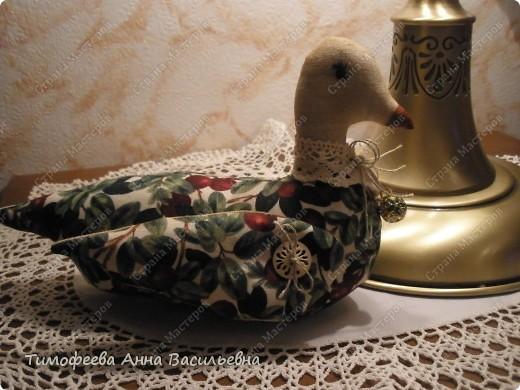 Уточка, как символ домашнего очага)) фото 3