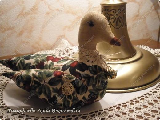 Уточка, как символ домашнего очага)) фото 4