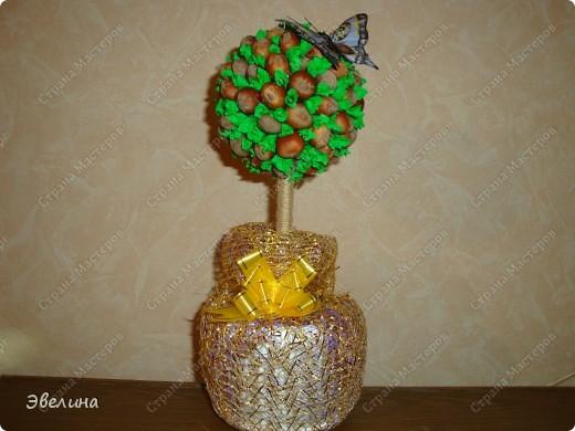 вот такое дерево из фундука сделано на заказ
