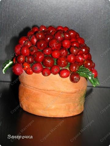 Ягоды в горшочке! Горшочек, листья и каждая ягодка слеплены из солёного теста. Я долго работала над этим украшением, но результат меня порадовал! Каждая ягодка на короткой веточке и все они прикрепляются к шарику из монтажной пены! фото 1