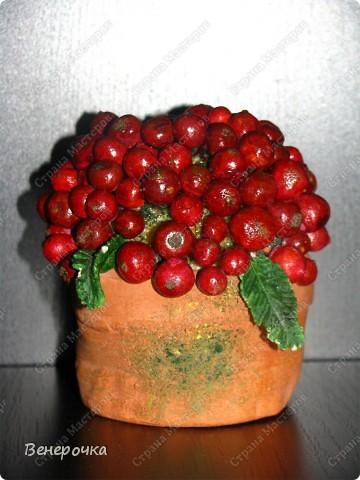 Ягоды в горшочке! Горшочек, листья и каждая ягодка слеплены из солёного теста. Я долго работала над этим украшением, но результат меня порадовал! Каждая ягодка на короткой веточке и все они прикрепляются к шарику из монтажной пены! фото 2