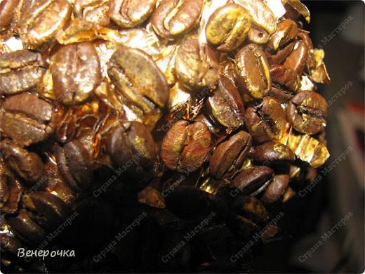 Золотое кофейное дерево! фото 3